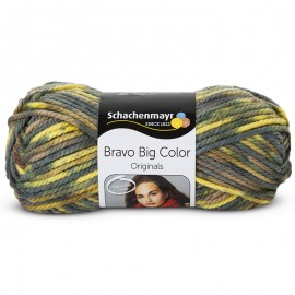 Schachenmayr Bravo Big Color