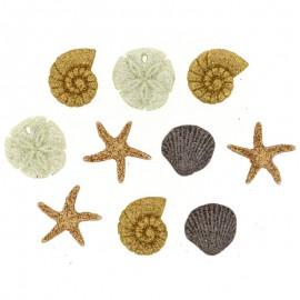 Boutons Seashells At The Seashore - Dress It Up