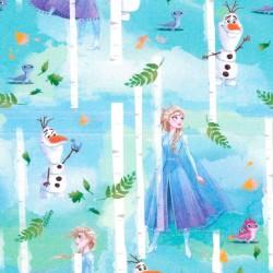 Tissu en Coton - Elsa et...